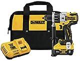 DEWALT 20V MAX XR Rotary Hammer/Drill Combination Kit, 2-Inch, Brushless, Power Detect Tool Technology (DCD998W1)