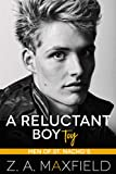 A Reluctant Boy Toy: A demisexual, bi awakening romance (Men of St. Nacho's Book 3)