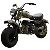 Massimo Motor Warrior200 196CC Engine Super Size Mini Moto Trail Bike MX Street for Kids and Adults Wide Tires Motorcycle Powersport CARB Approved (Camo)