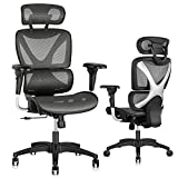Gabrylly Ergonomic Office Chair, Large Mesh Chair with Lumbar Support - Double Back, Adjustable Headrest & 2D Armrests, High-Back Home Desk Chair with Tilt Function, Swivel Computer Executive Chair