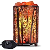 Himalayan Salt Lamp, Salt Rock Lamp Natural Night Light in Forest Design Metal Basket with Dimmer Switch (4.1 x 6.5' 4.4-5lbs), 25Watt Bulbs & ETL Cord 1 Pack