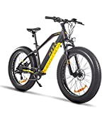 Katharina Shop Adults Electric Bike 750W Motor Fat Tire Electric Mountain Bicycle 48V Lithium Battery 7-Speed Snow Beach E-Bike Dirt Bicycles UL, Black