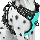PoyPet No Pull Dog Harness, Reflective Comfortable Vest Harness with Front & Back 2 Leash Attachments and Easy Control Handle for Small Medium Large Dog (Mint Blue,L)
