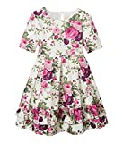 Janie and Jack Girl's Floral Dress (Toddler/Little Kids/Big Kids) Multi 2T (Toddler)