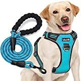 tobeDRI No Pull Dog Harness Adjustable Reflective Oxford Easy Control Medium Large Dog Harness with A Free Heavy Duty 5ft Dog Leash (L (Neck: 18'-25.5', Chest: 24.5'-33'), Blue Harness+Leash)