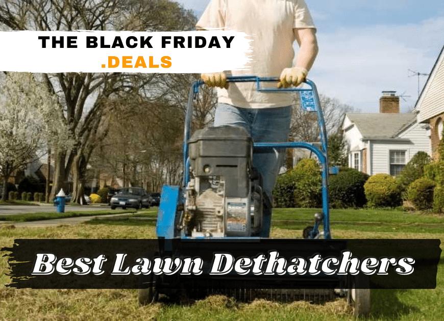 Best Lawn Dethatchers