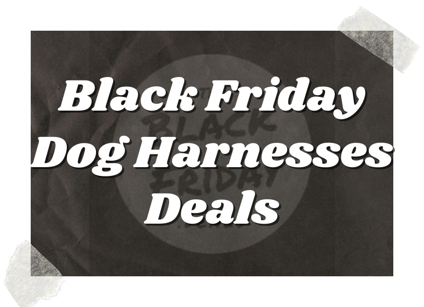 Black Friday Dog Harnesses Deals