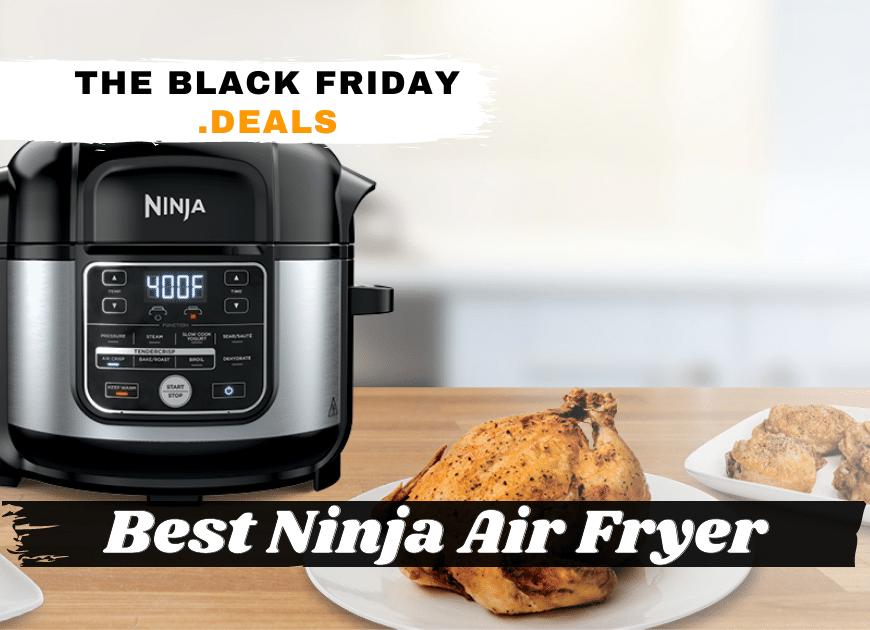 Best Ninja Air Fryer